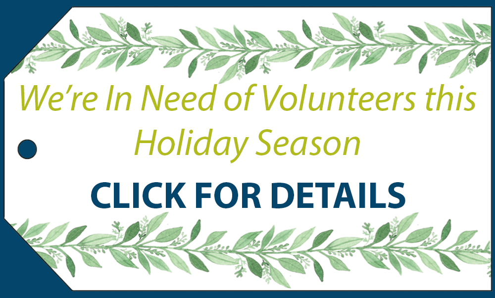 holiday-volunteers-needed-banner