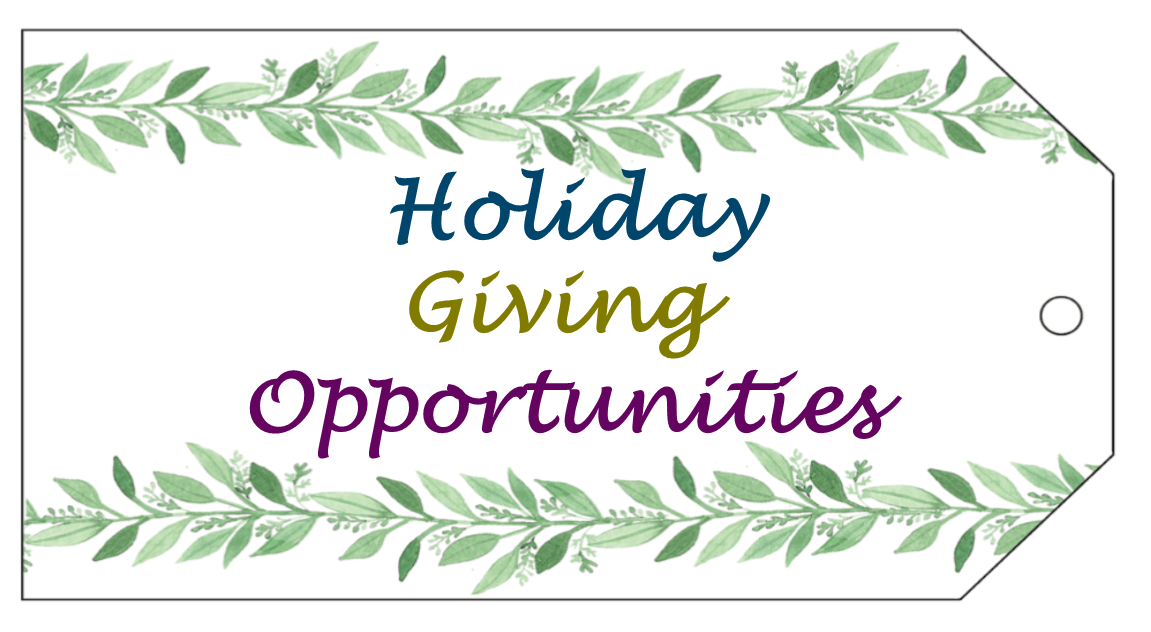 website-holiday-giving-pic