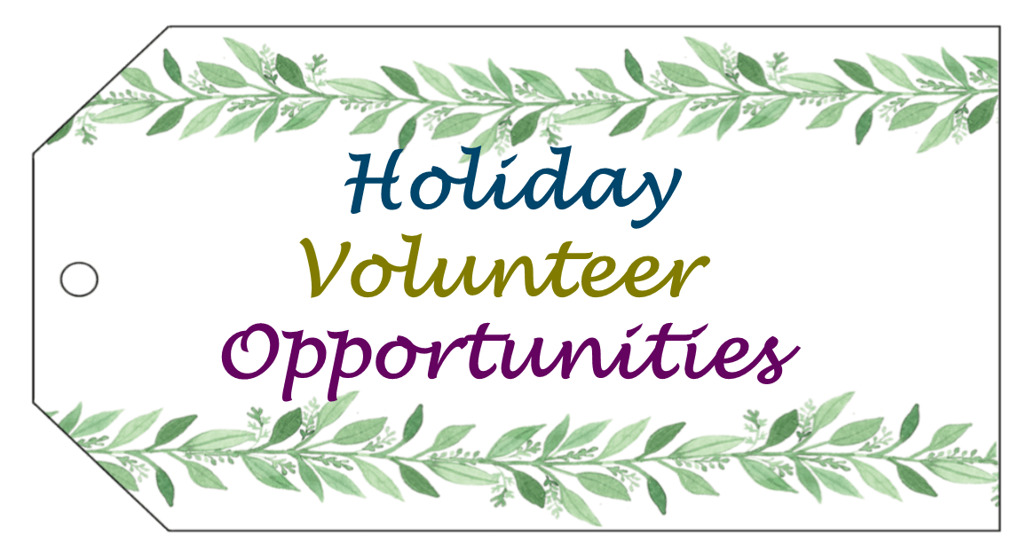 website-holiday-volunteer-pic